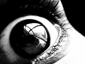 Dimanche 19 mai: Pourriture de psychiatrie